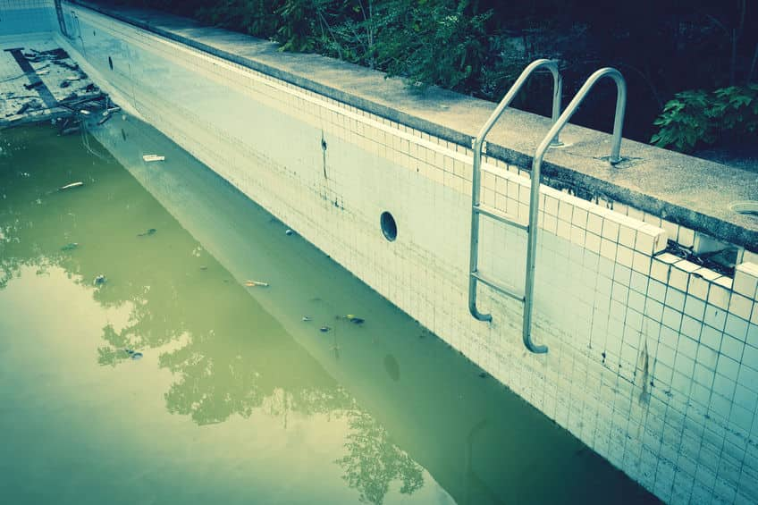 Green Pool Near me. A photo of a green pool that needs servicing.